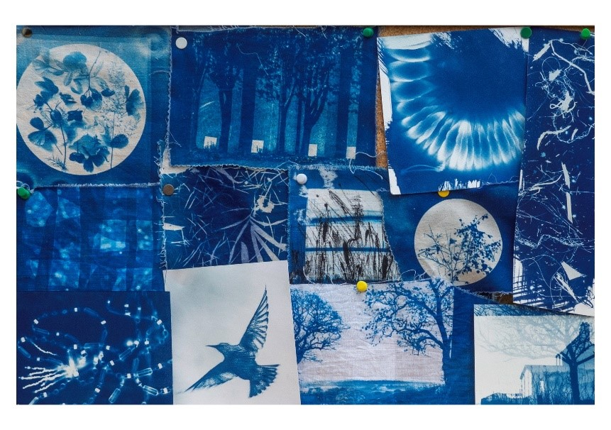 Jeni Reid Mixed examples of cyanotype experiments on fabric and paper using digital negatives and photograms.